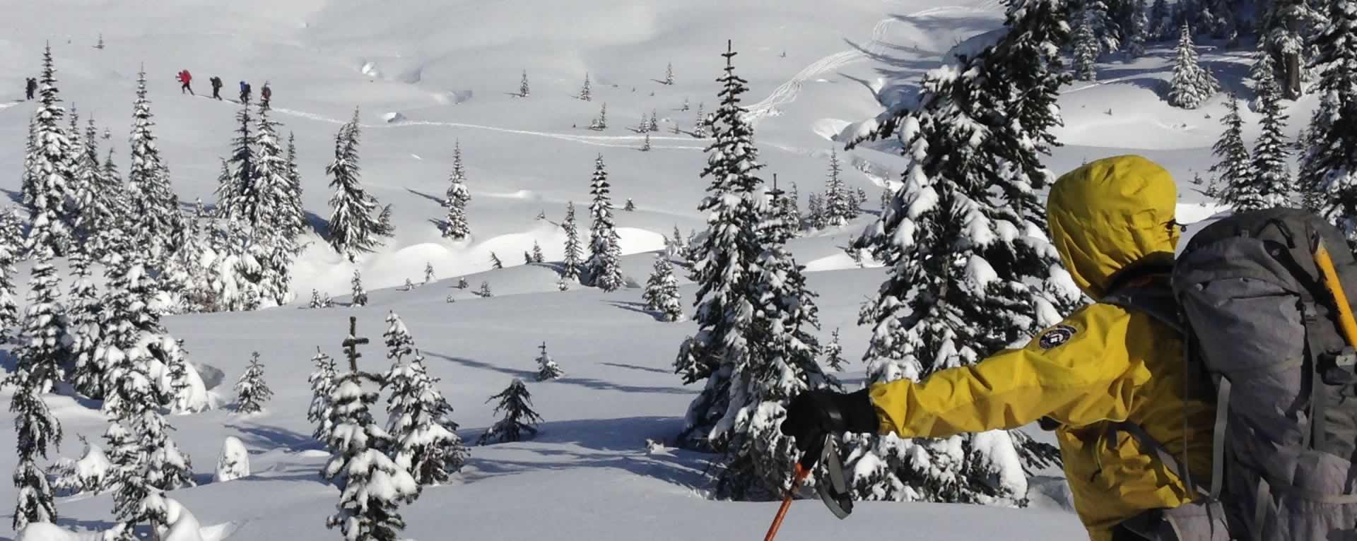 Tacoma Mountain Rescue